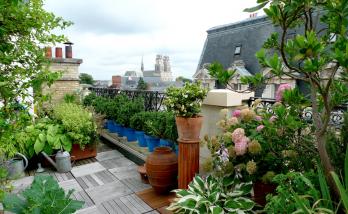 Aménager un toit terrasse à Boulogne